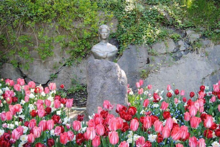 Busto Sissi in mezzo ai tulipani